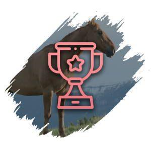 Www Pferdewetten